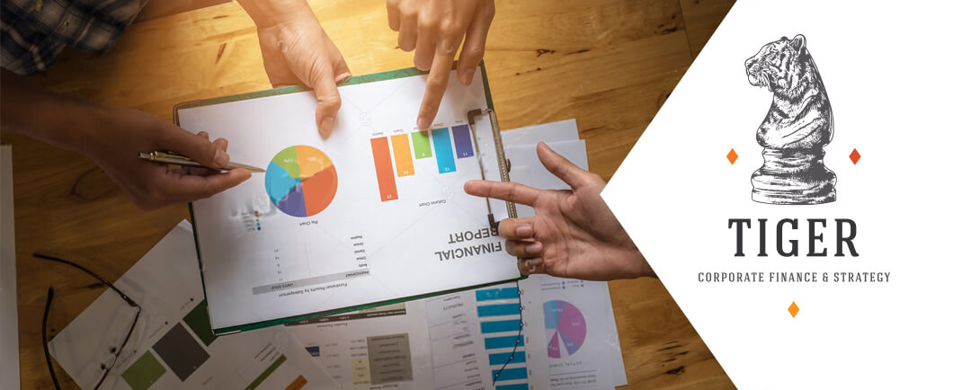 Een Cap Table, wat is het en waarom zijn ze belangrijk bij het aantrekken van groeifinanciering?